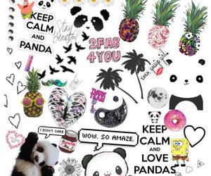 panda and tumblr image