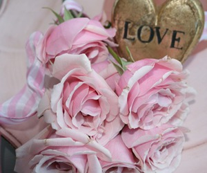 heart, pink, and rose image