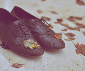 shoes, fall, and leaves image