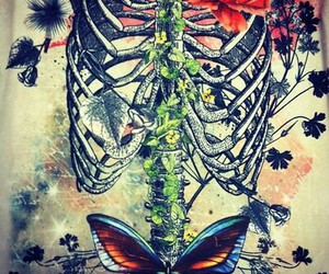 butterfly, skeleton, and flowers image