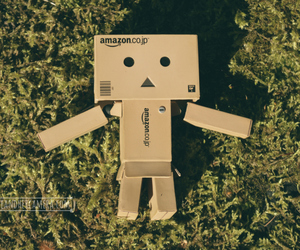 danbo, summer, and danboard image
