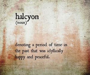 halcyon and words image