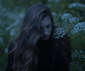 birdy, flowers, and dark image