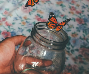 bed, monarch butterfly, and boho image