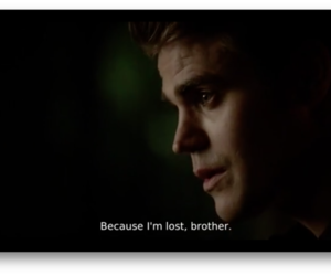 brother, stefan, and damon salvatore image