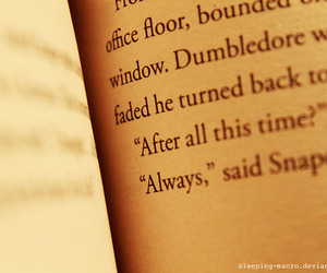 always, harry potter, and dumbledore image