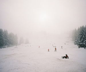 Skiing, snowboarding, and sport image