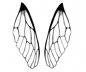 dragonfly, drawing, and illustration image