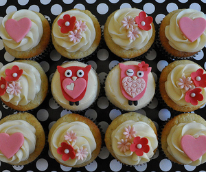 cupcake, owl, and flowers image