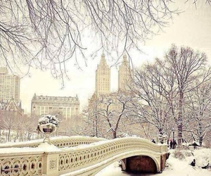 beautiful, Central Park, and snow image