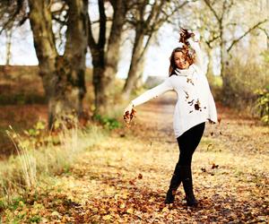 autumn, free, and fall image