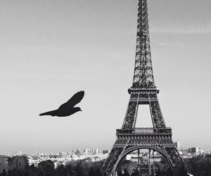 beautiful, eiffel tower, and france image