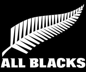 all blacks image