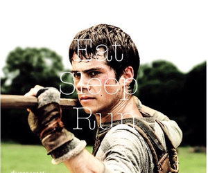 dylan o'brien, the maze runner, and thomas image