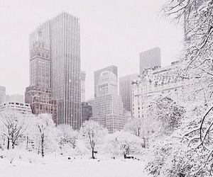 christmas, snow, and bigcity image