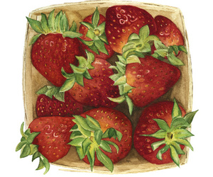 FRUiTS, strawberries, and cute image