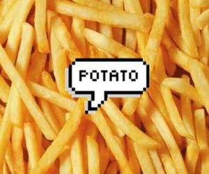 potato, food, and fries image