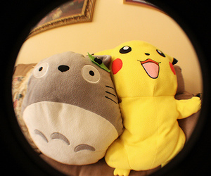 pikachu, totoro, and photography image