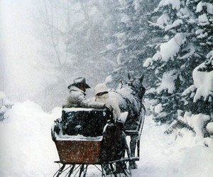 winter, snow, and horse image