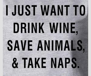 animals, drink, and naps image