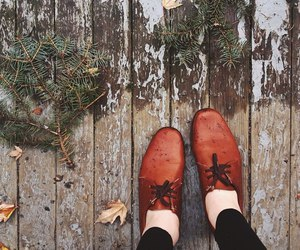 autumn, nature, and shoes image