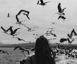 bird, girl, and black and white image