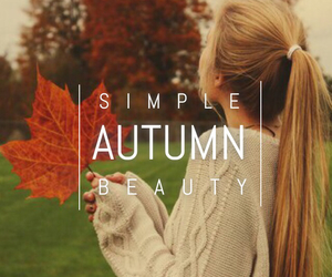 autumn, leaves, and beauty image