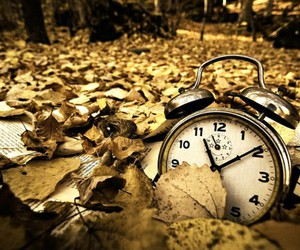 leaves, clock, and photography image