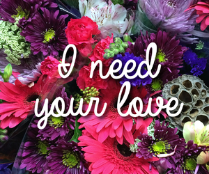 love, flowers, and need image