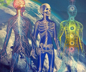 body, chakras, and mind image
