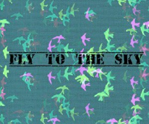 fly to the sky image