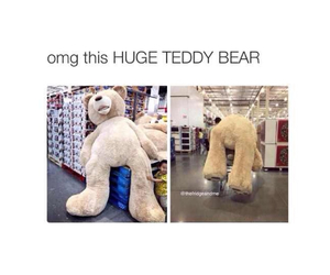 adorable, i want one, and teddy bear image