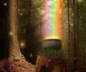 rainbow, magic, and forest image
