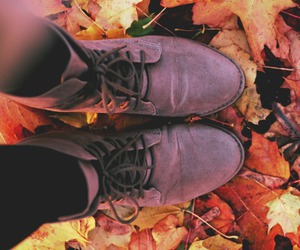 autumn, beauty, and cozy image