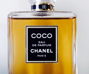 chanel, parfume, and coco image