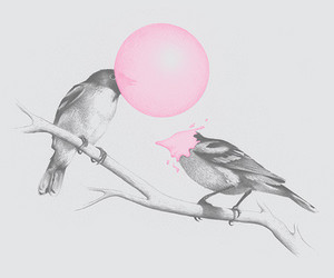 bird, pink, and goma de mascar image