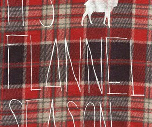 flannel, autumn, and winter image