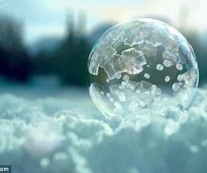 bubble, nature, and sun image