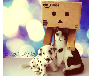 danbo, danboard, and heart image