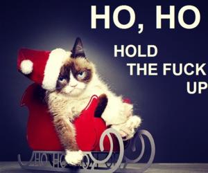christmas, funny, and xmas image