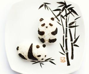 panda, food, and rice image