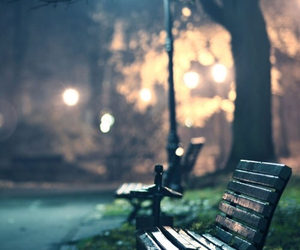 light, night, and bench image