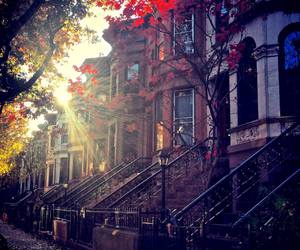 autumn, house, and Brooklyn image