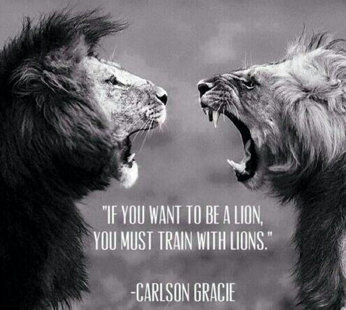 If You Want Ti Be A Lion You Must Train With Lions