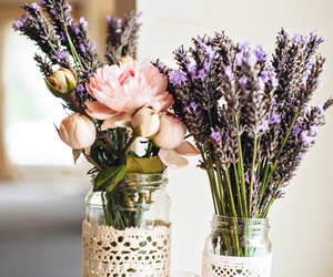 flowers, lavender, and rose image