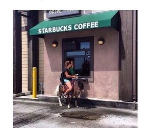 starbucks, funny, and coffee image