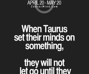 quotes, taurus, and words image