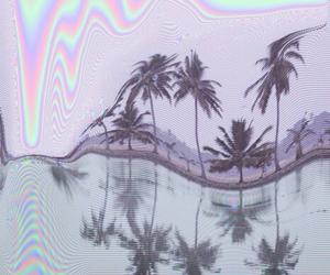 grunge, tumblr, and palms image