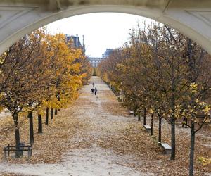 autumn, beauty, and photo image