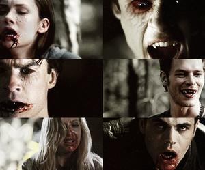 vampire, klaus mikaelson, and elena gilbert image